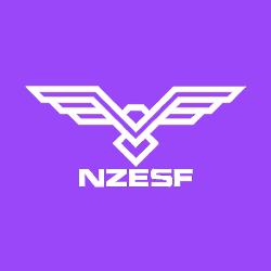 NZ ESports Foundation