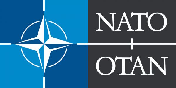 North Atlantic Treaty Organisation (NATO)
