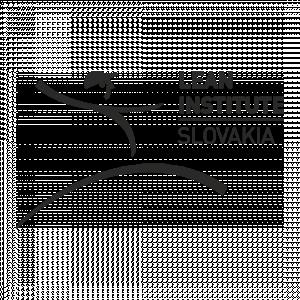 Lean Institute