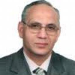 Mohamed El Ghazali Wali