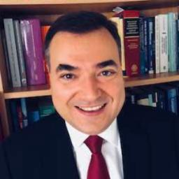Damir Kaufman