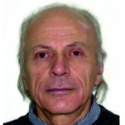 Alexandr I. Livshits